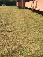 愛知県名古屋市名東区 マンション共用部の『草刈り作業』